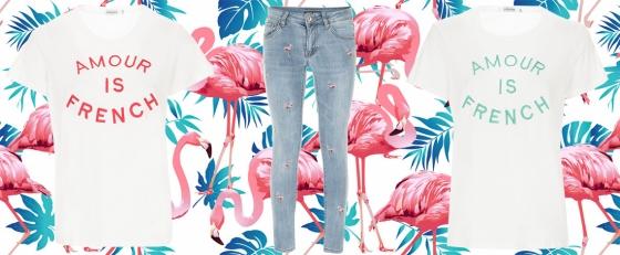 Flamingos all around